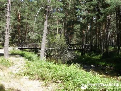 Las Pesquerías Reales - Senderismo Segovia (Ruta de las Pesquerías Reales); sendero verde